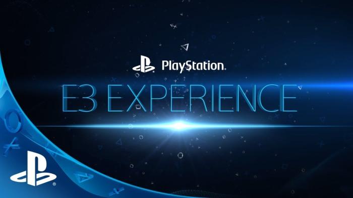 Sony-E3